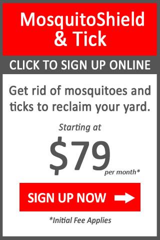 button mosquito & tick control